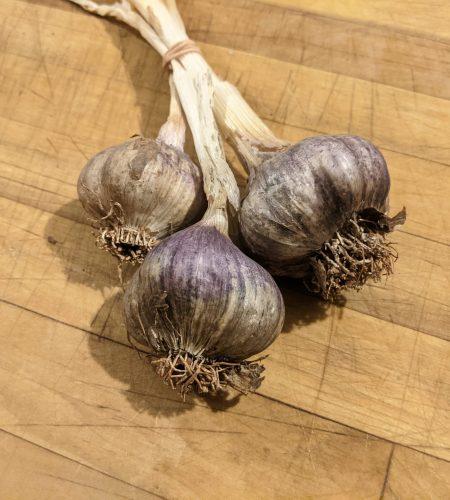 Garlic is back!